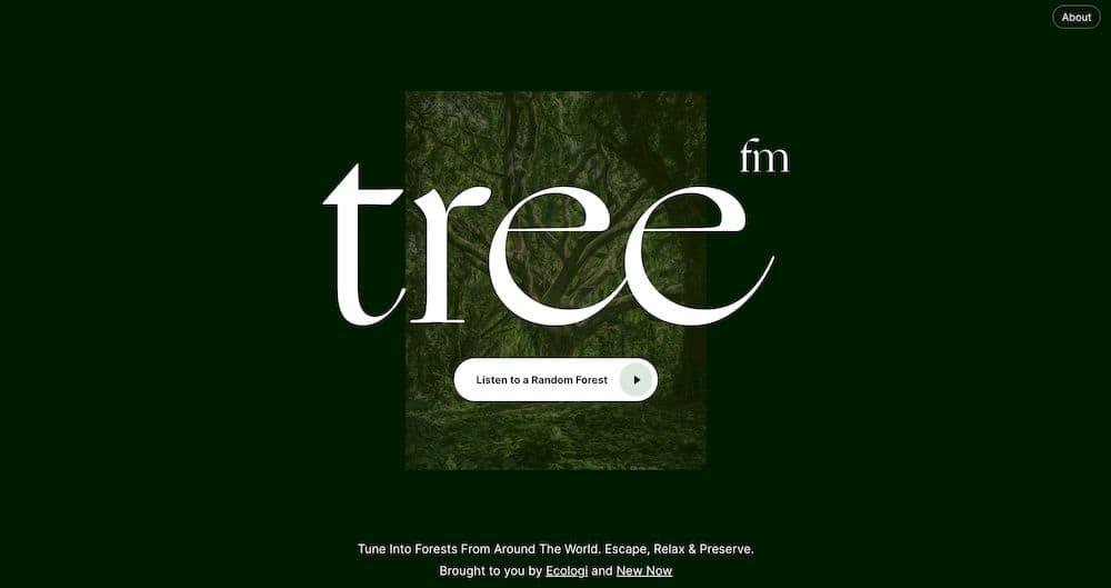 7 個免費線上白噪音網站推薦 - Tree.fm